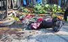 3 die in separate road accidents in Amritsar