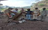 Leopard hide seized in Parwanoo; 1 held