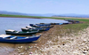 Breeding season on, 2-month  ban imposed on fishing