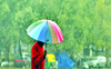 Scattered rainfall likely in tricity