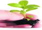 Plan to beautify Bharmour NH