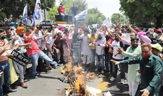Jobs to MLAs' sons: AAP stages protest outside MP Santokh Chaudhary's residence in Jalandhar