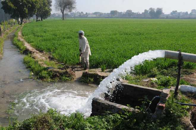 INFOCUS Agriculture: Enable, incentivise farmers to save every drop