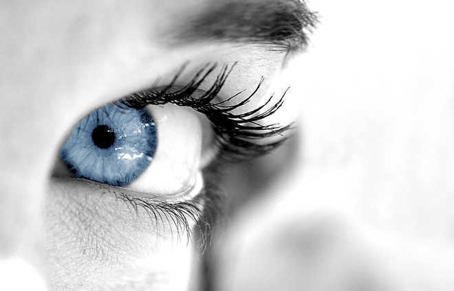 Covid virus may reach various layers of human retina: Study