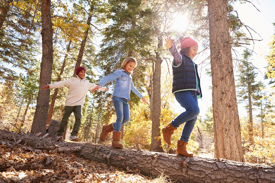 Living near woodlands good for children