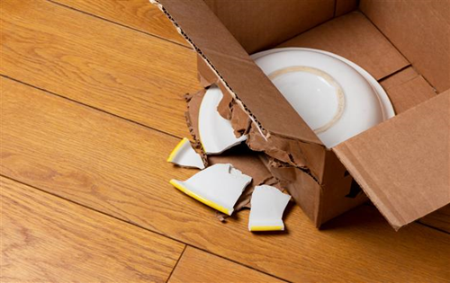 Goods carrier liable for loss