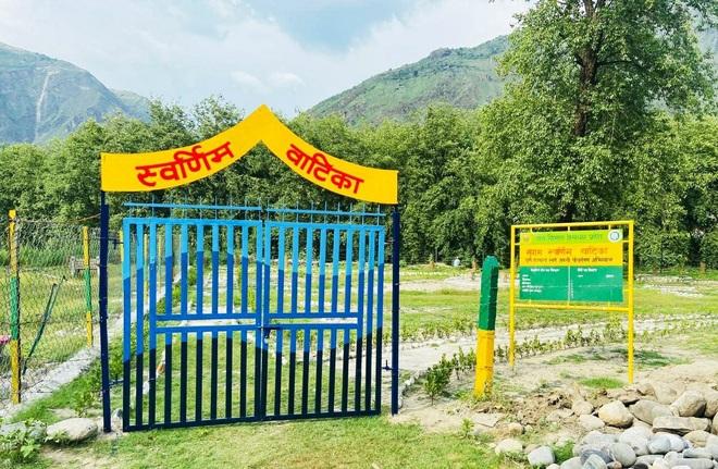 IFS officer Aishwarya Raj transforms barren land into 'Swarnim Vatika' at Shamshi in Kullu
