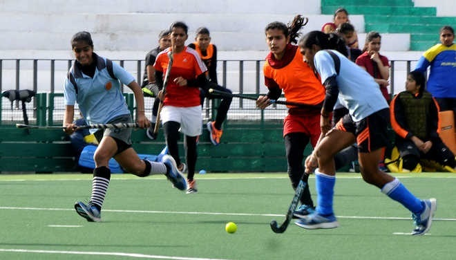 Chandigarh coaches pitch for one more Astroturf for hockey