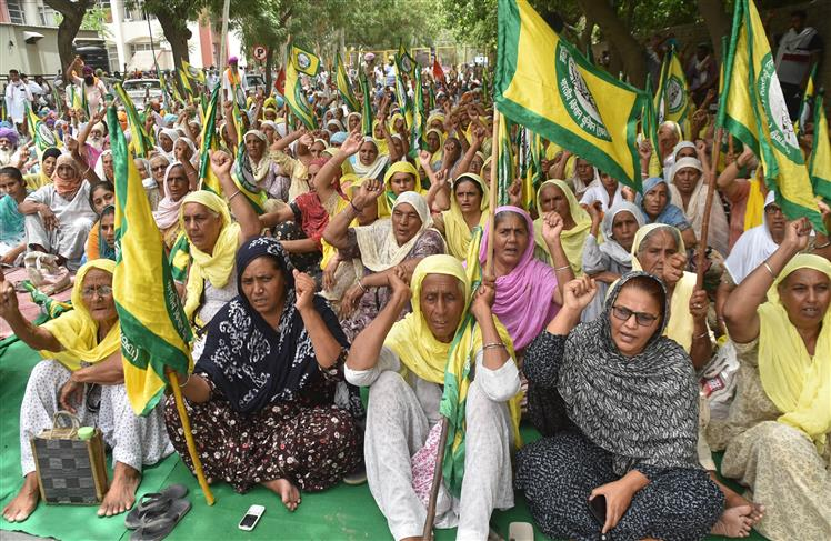 BKU activists stage dharna at DC offices over fuel price, power outages
