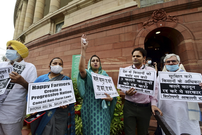 Hold JPC probe into farmers' deaths during agitation: Opposition