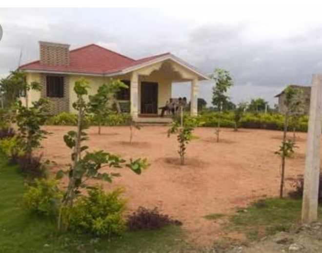 Faridabad: All set for demolitions on 1,430 acres of Aravalli land