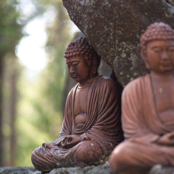 International conference on Buddhism in November