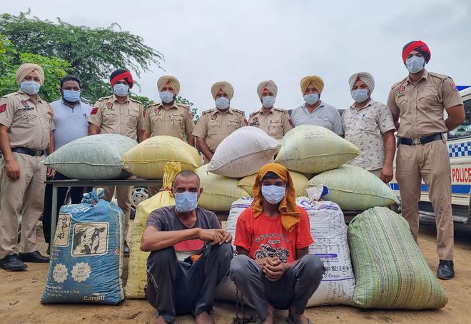 Kapurthala: 2 arrested with 180-kg poppy husk