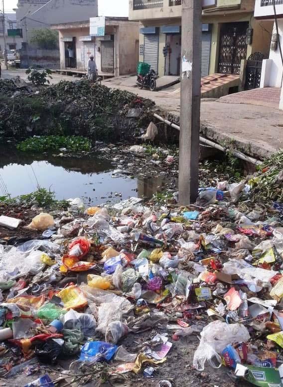 Waste dumps, choked nullah dot Ambala village