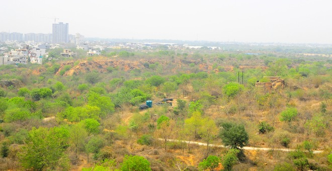 Setback to outsiders buying property in Faridabad village in Aravallis