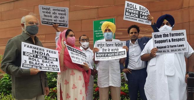 Scrap farm laws before talks: Shiromani Akali Dal