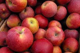 Amazon to acquire apple, stone fruits, veggies in Himachal
