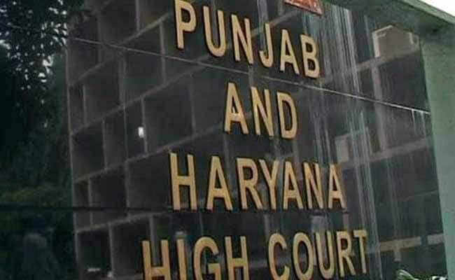Bust drug cartel, High Court directs Punjab DGP