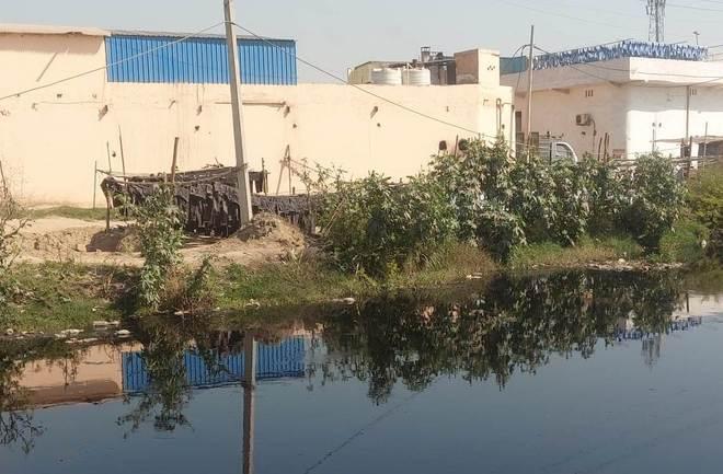 12 dyeing units in Sonepat sealed