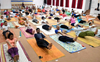 Research scholar to hold yoga camp in Shimla
