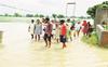 Crop in 43 Sangrur villages submerged