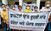 Patiala medical, dental teachers announce indefinite stir
