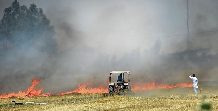 Punjab given 76K machines in 3 yrs to stop farm fires: Centre