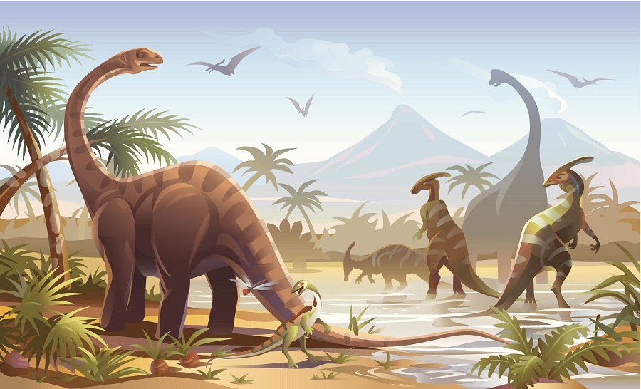 Birds' brain may hold clue why they outlived other dinosaurs