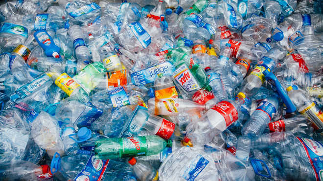 Single-use plastic items like candy sticks, plates, cups to be prohibited from July 1, 2022: Govt