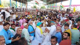 BKU leader Rakesh Tikait criticises government's action against farmers; terms them 'Sarkari Talibani'