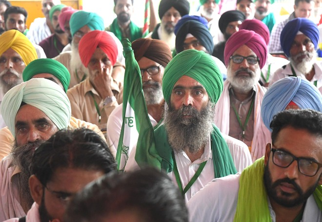 On average, protesting Punjab farmers who died in Delhi had 2.59 acres