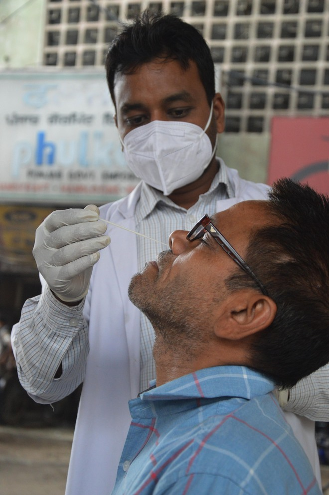 Covid-19: Two test positive in Ludhiana, lowest this year