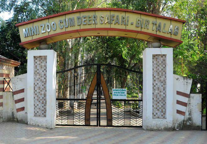 3 deer die at Bir Talab Zoo in Bathinda