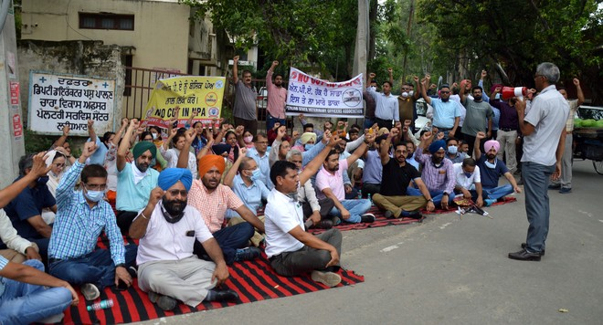 Ludhiana: Veterinarians lay siege to Dy Director's office