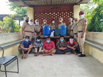 Gang involved in theft of transformer oil busted in Kapurthala
