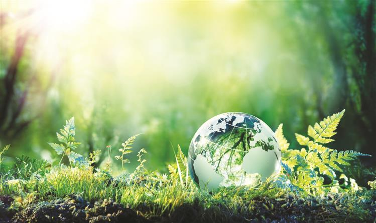 Mumbai teen wins global recognition for environment-related project