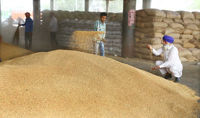 Food Corporation of India asked to take back poor quality wheat