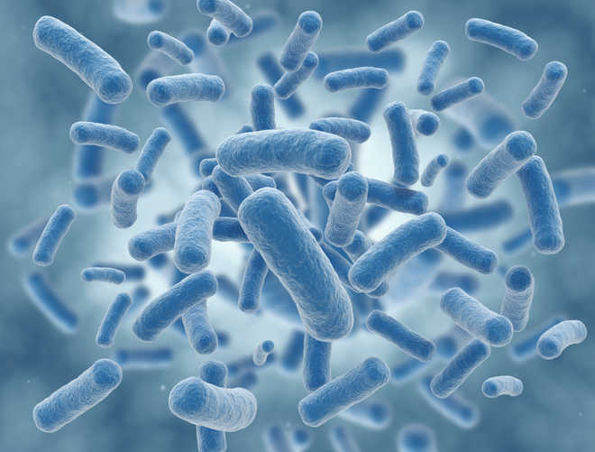 BHU researchers find bacteria that kill toxic metal in water
