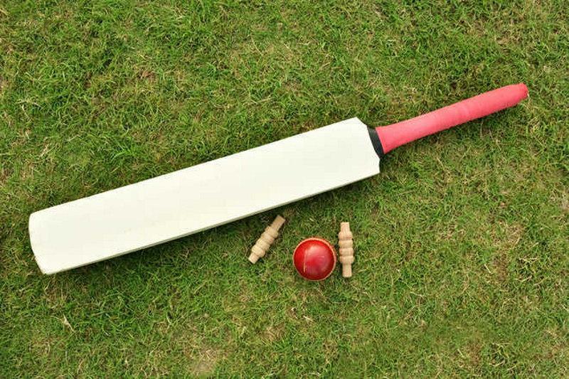 Gitansh to lead Ludhiana in inter-district cricket tourney