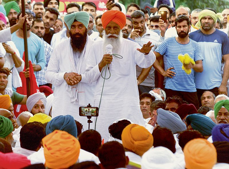 Wheat MSP hiked by 2% amid Karnal standoff