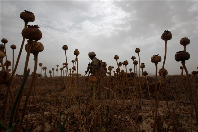 Afghanistan heroin worth Rs 2,000 crore confiscated at Gujarat port