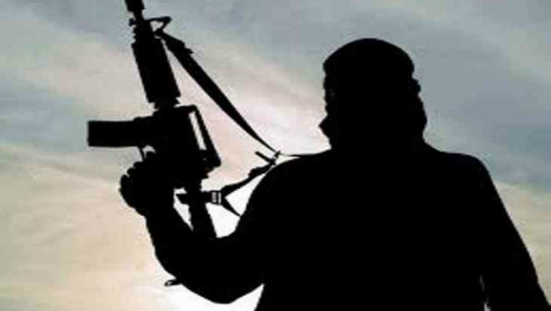 Pakistan home to 12 terror outfits: US Congress report