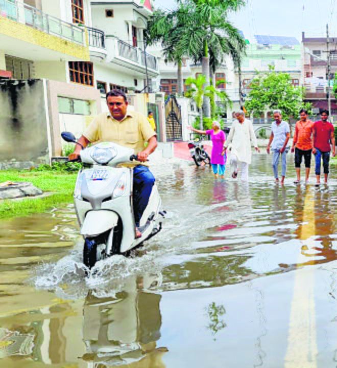 Residents have a harrowing  time as Rohtak waterlogged