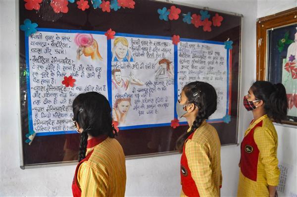 Focus on studies, don't get involved in seeking remedies, SC tells minor