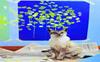 Cats that paint!