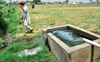 Punjab's water crisis
