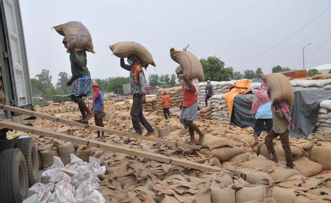 Punjab farmers give thumbs down to wheat MSP hike