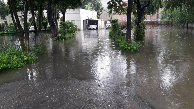 12 Tarn Taran border villages inundated