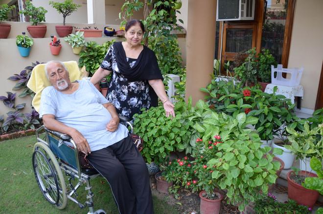 Ram Singh Hundal motivates others to indulge in gardening