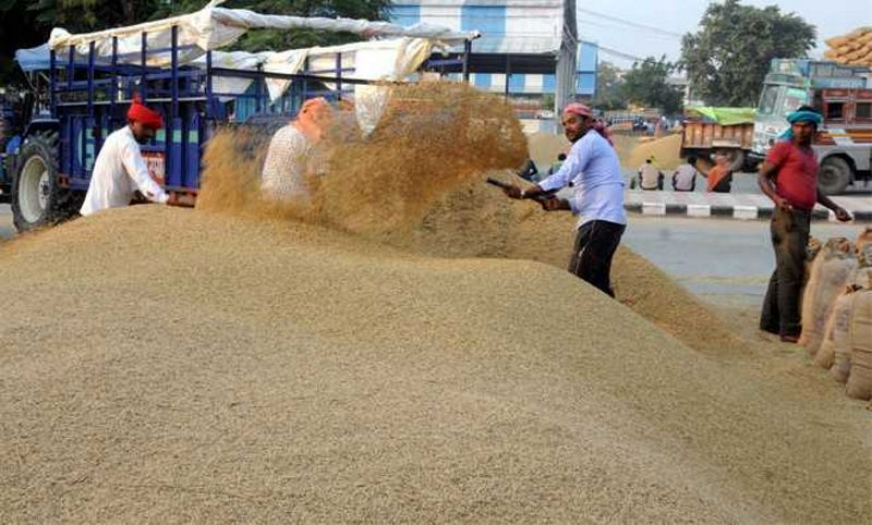 RSS affiliate Bhartiya Kisan Sangh to protest today, wants legal guarantee on MSP